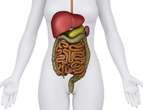 Mejora tu hígado con el ayuno