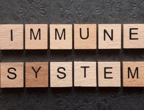 El sistema inmunitario mejora con el ayuno